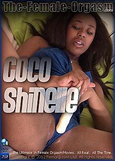 Coco Shinelle